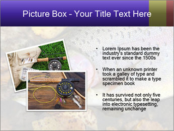 Wild rainbow PowerPoint Template - Slide 20