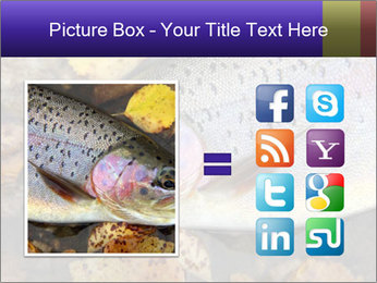 Wild rainbow PowerPoint Template - Slide 21