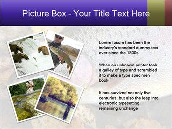 Wild rainbow PowerPoint Template - Slide 23