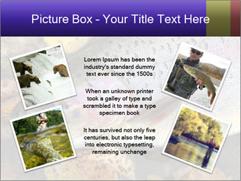 Wild rainbow PowerPoint Template - Slide 24