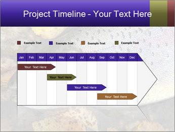Wild rainbow PowerPoint Template - Slide 25