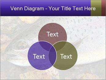 Wild rainbow PowerPoint Template - Slide 33
