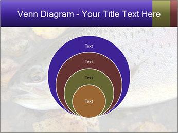 Wild rainbow PowerPoint Template - Slide 34
