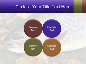 Wild rainbow PowerPoint Template - Slide 38