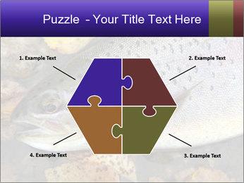 Wild rainbow PowerPoint Template - Slide 40