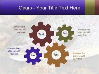 Wild rainbow PowerPoint Template - Slide 47