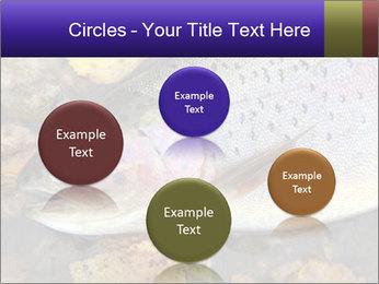 Wild rainbow PowerPoint Template - Slide 77