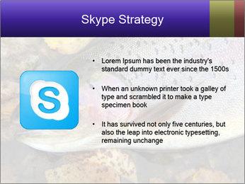 Wild rainbow PowerPoint Template - Slide 8