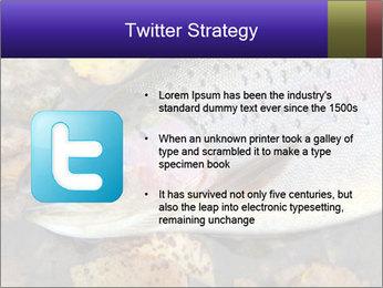 Wild rainbow PowerPoint Template - Slide 9