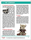 0000091503 Word Template - Page 3