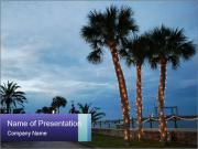 Christmas In Florida PowerPoint Template