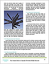 0000091523 Word Template - Page 4
