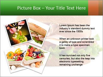 Breast sandwich PowerPoint Template - Slide 23