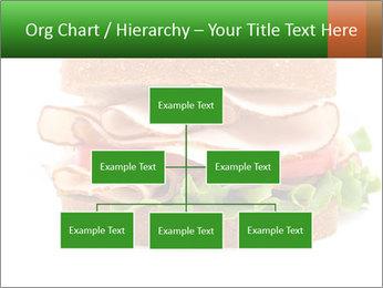 Breast sandwich PowerPoint Template - Slide 66