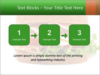 Breast sandwich PowerPoint Template - Slide 71