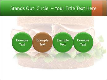 Breast sandwich PowerPoint Template - Slide 76