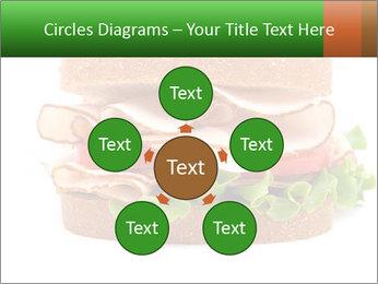 Breast sandwich PowerPoint Template - Slide 78