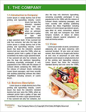 0000091524 Word Template - Page 3