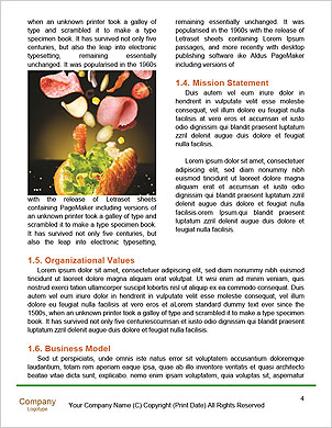 0000091524 Word Template - Page 4