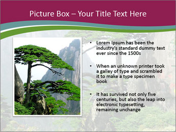 Pine PowerPoint Template - Slide 13