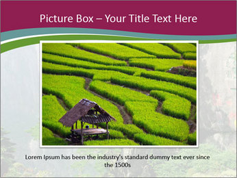Pine PowerPoint Template - Slide 15