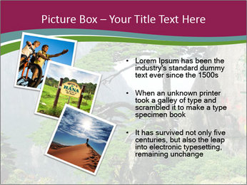 Pine PowerPoint Template - Slide 17