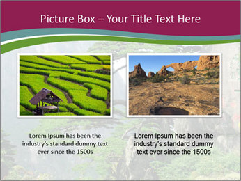 Pine PowerPoint Template - Slide 18