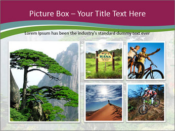 Pine PowerPoint Template - Slide 19