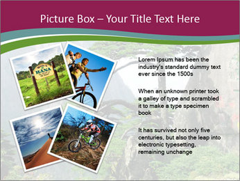 Pine PowerPoint Template - Slide 23
