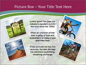 Pine PowerPoint Template - Slide 24