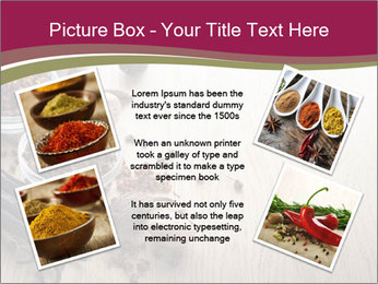 Spice PowerPoint Templates - Slide 24