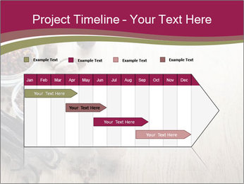 Spice PowerPoint Templates - Slide 25