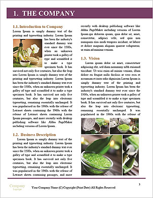 0000091531 Word Template - Page 3