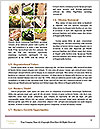 0000091531 Word Template - Page 4
