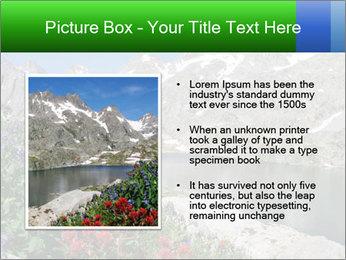 Alpine Flowers PowerPoint Templates - Slide 13