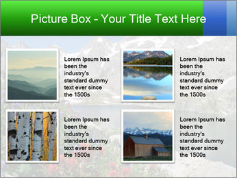Alpine Flowers PowerPoint Templates - Slide 14