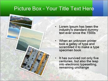 Alpine Flowers PowerPoint Templates - Slide 17