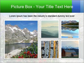 Alpine Flowers PowerPoint Templates - Slide 19