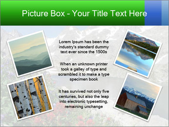 Alpine Flowers PowerPoint Templates - Slide 24
