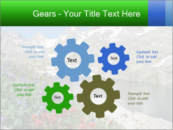 Alpine Flowers PowerPoint Templates - Slide 47