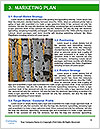 0000091532 Word Templates - Page 8