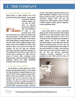 0000091534 Word Template - Page 3