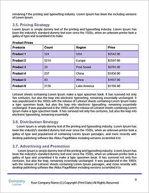 0000091536 Word Template - Page 9