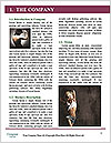 0000091539 Word Template - Page 3