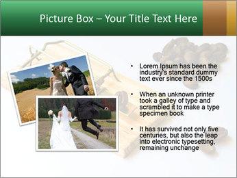 Mousetrap PowerPoint Template - Slide 20