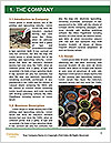 0000091544 Word Template - Page 3