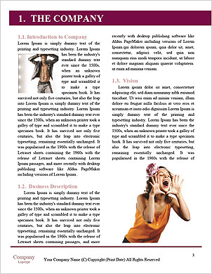 0000091551 Word Template - Page 3