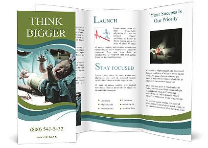 0000091565 Brochure Template