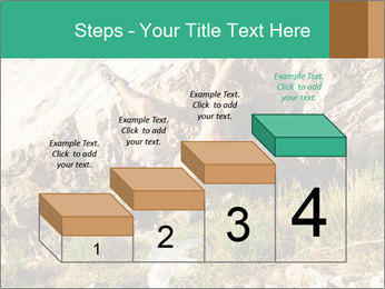 Climber PowerPoint Template - Slide 64
