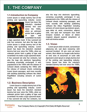 0000091575 Word Template - Page 3